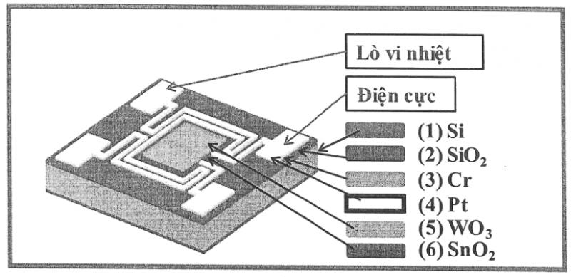 Cảm biến khí NH3 dạng màng mỏng SNO2/WO3