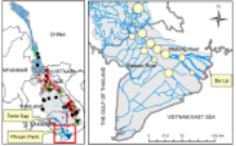 Morphological change assessment from intertidal to river-dominated zones using multiple-satellite imagery