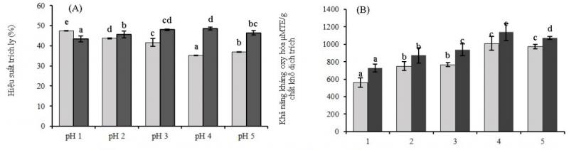 Trích ly hợp chất kháng oxy hóa từ vỏ và thịt cà phê